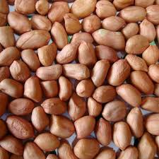Unshelled Groundnuts