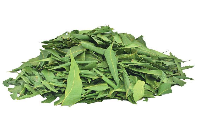 Dried Neam Leaf