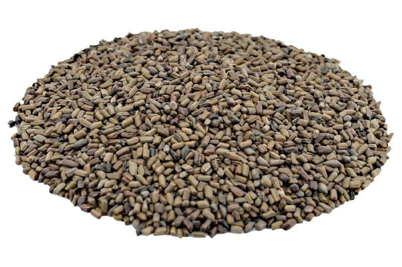 Tora Seeds