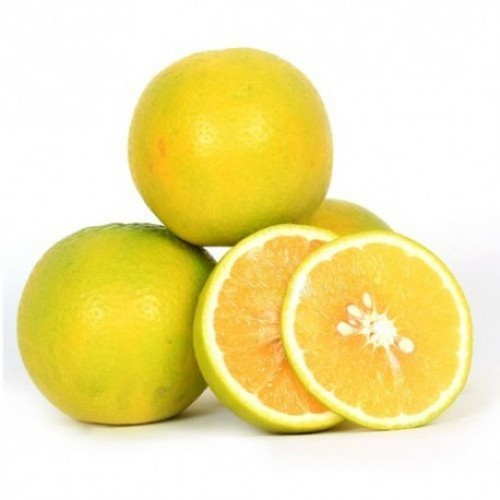 Fresh Sweet Lime