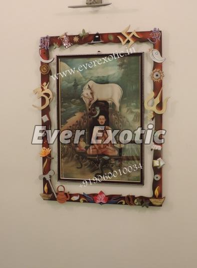Decorative Photo Frame 02