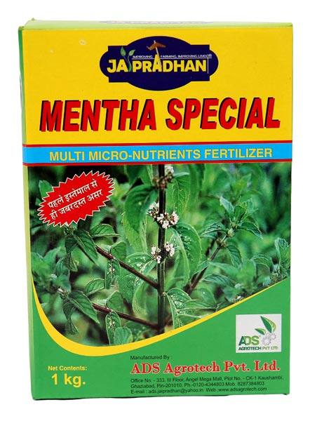 Mentha Special