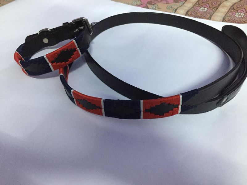 Leather Dog Collar with Leash