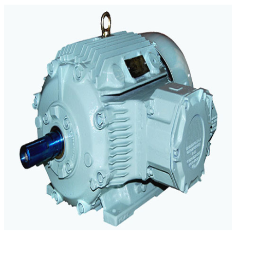 1HP Flame Proof Electric Motor
