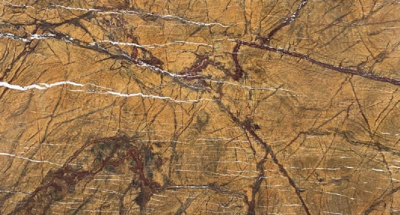 Rain Forest Gold Marble 2