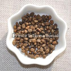 Okwetra Herbal Seeds