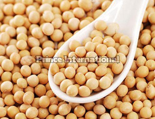 Soybean Oil Seeds