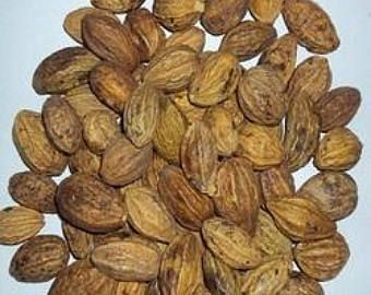 Dried Chebulic Myrobalan