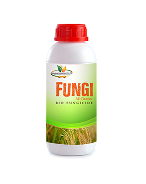 Fungi All Cleaner