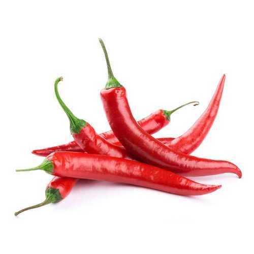 Fresh Red Chilli