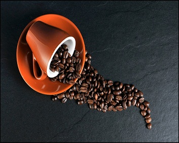 Instant Coffee Premix Making Course