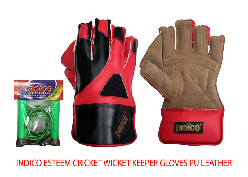 Esteem Cricket Wicket Keeper Gloves