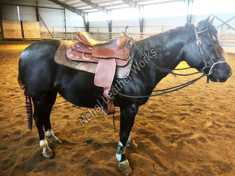 10010098 Western Horse Saddles
