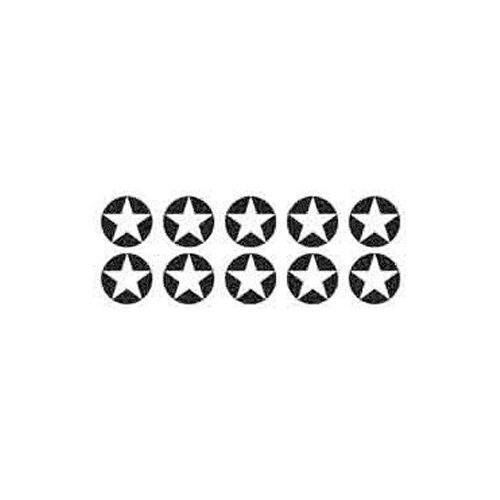 Small Ayurved Sujok Star Magnet