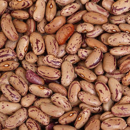 Chitra Kidney Beans