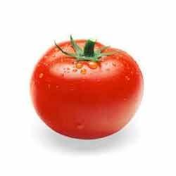 Fresh Raw Tomato