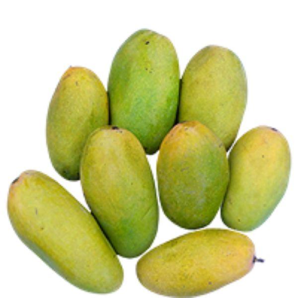 Fresh Dasheri Mango