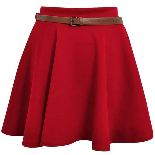 Ladies Fancy Skirt