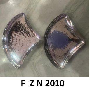 F Z N 2010