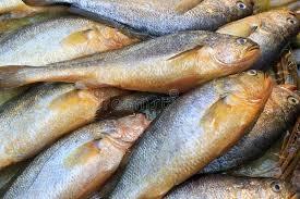 Vola Fish