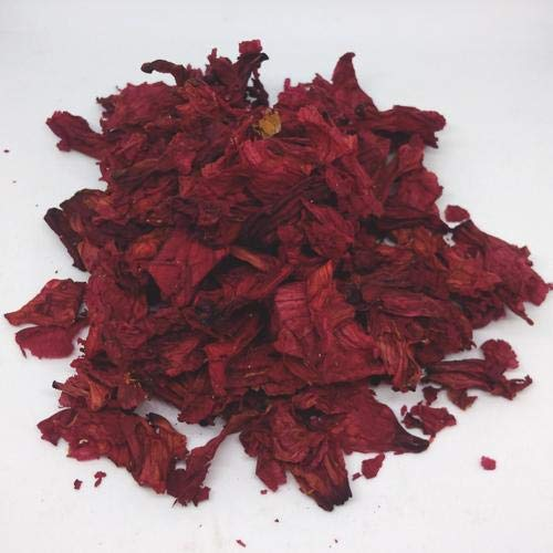 Dried Rhododendron Flowers