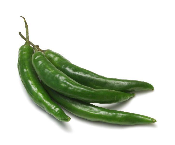 Long Green Chilli