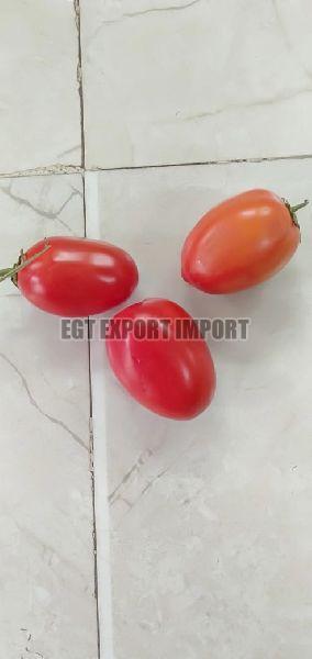 Fresh Hybrid Tomato