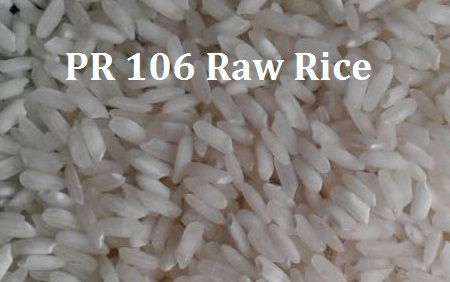PR 106 Raw Non Basmati Rice