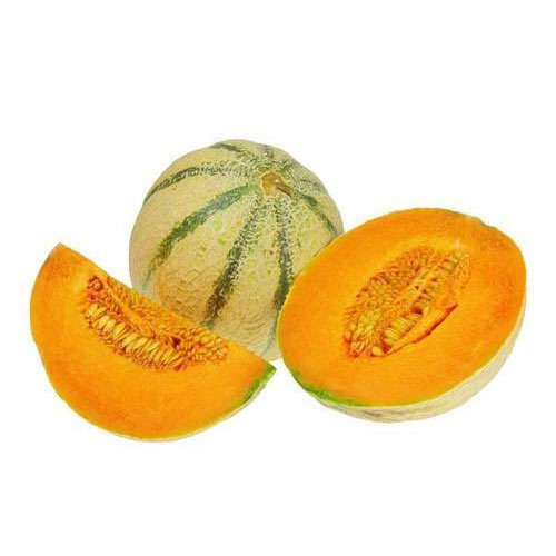 Fresh Muskmelon