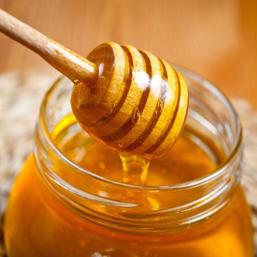 Pongamia Honey