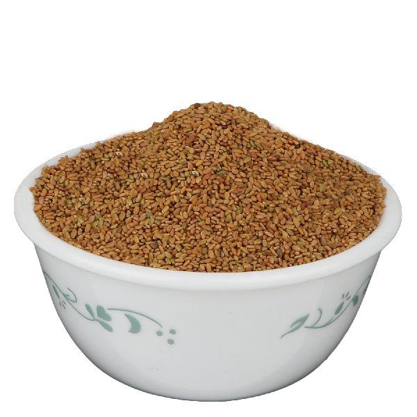 Champa Methi Seeds