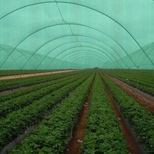 Agriculture Project Preparation Services