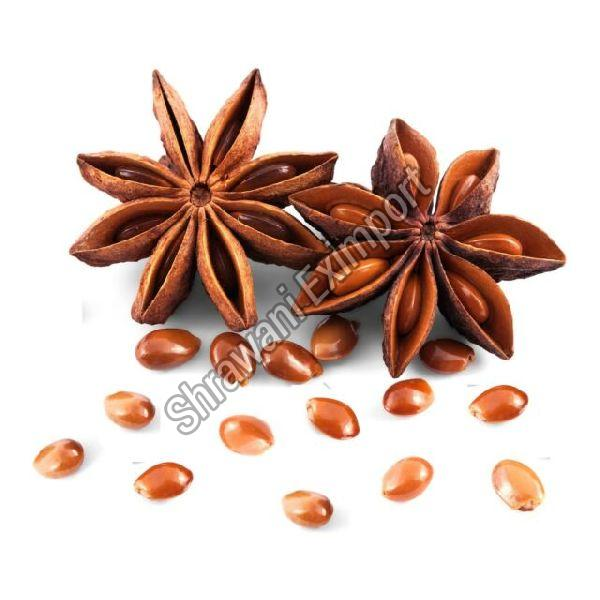 Organic Star Anise Seeds