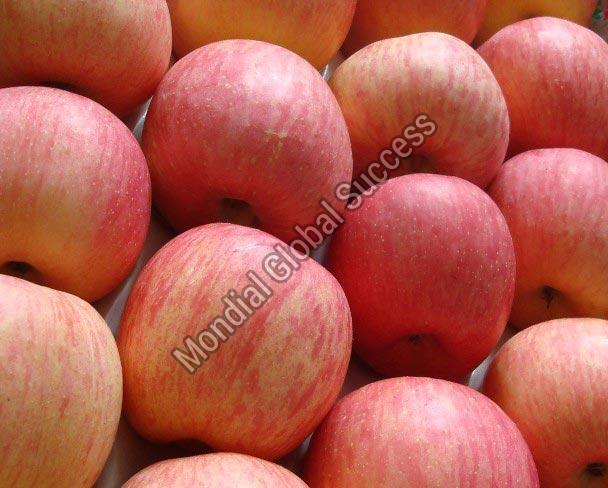 A Grade Fresh Apple