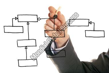 Project and Programme Management Services