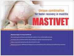 Mastivet Anti Mastitis Powder
