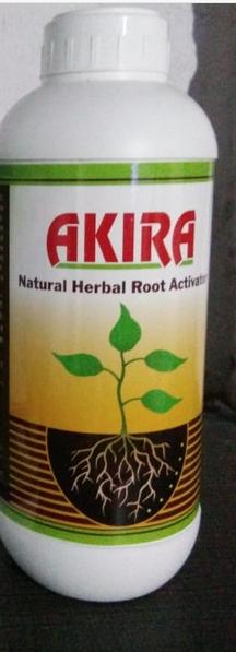 Akira  Root Stimulator