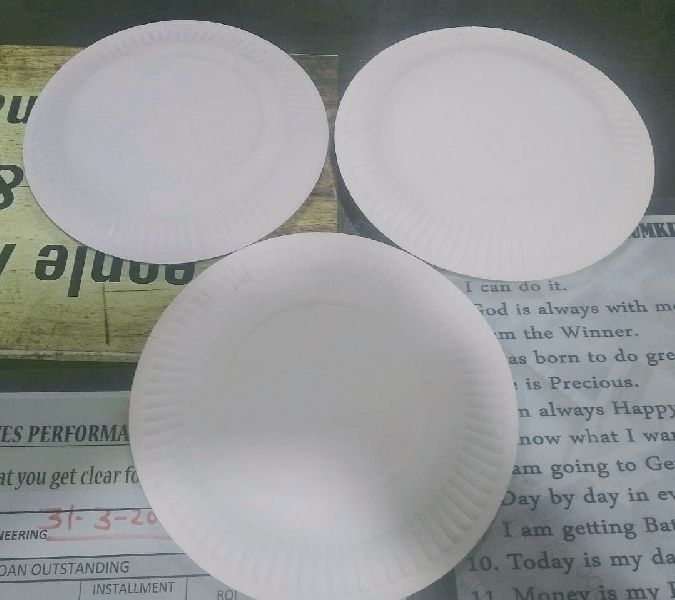 Paper Plate 07