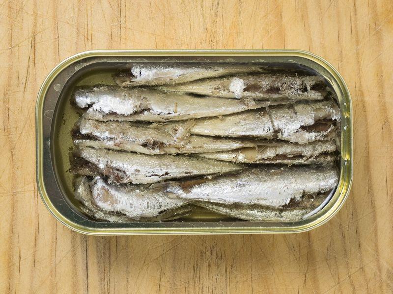 Canned Sardine Fish
