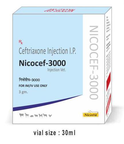 Nicocef-3000 Injection