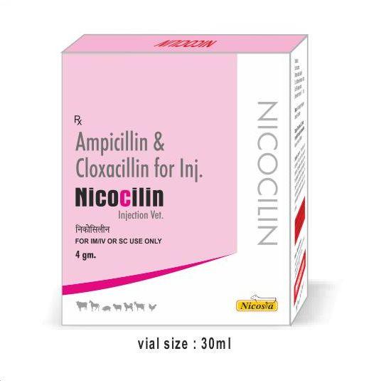 Nicocillin 4gm Injection