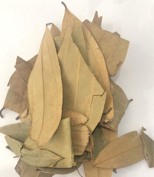 Dried Daphne Leaves