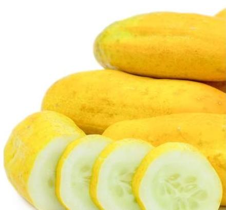 Fresh Yellow Cucumber