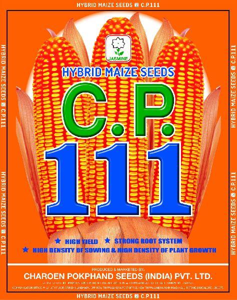 C.P. 111 Hybrid Maize Seeds