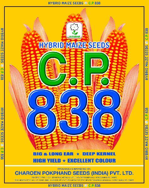 C.P. 838 Hybrid Maize Seeds