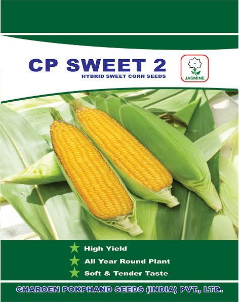 C.P. Sweet 2 Hybrid Sweet Corn Seeds