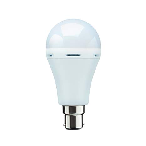 LED Inverter Bulbs