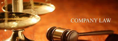 Company Law Consultancy Services