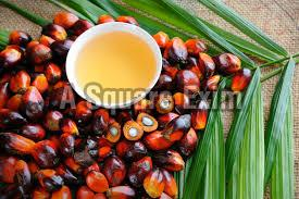 Pure Palm Oil