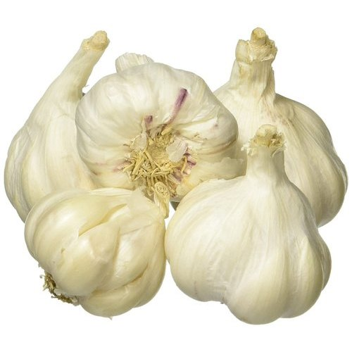 25mm Fresh Garlic